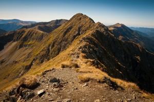mountains-690716_640